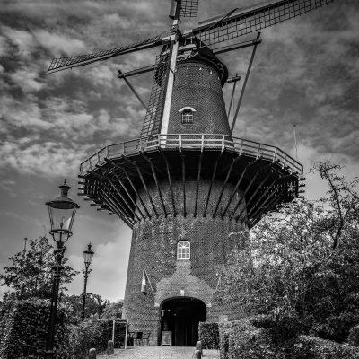 Foto door Willy van Dreumel